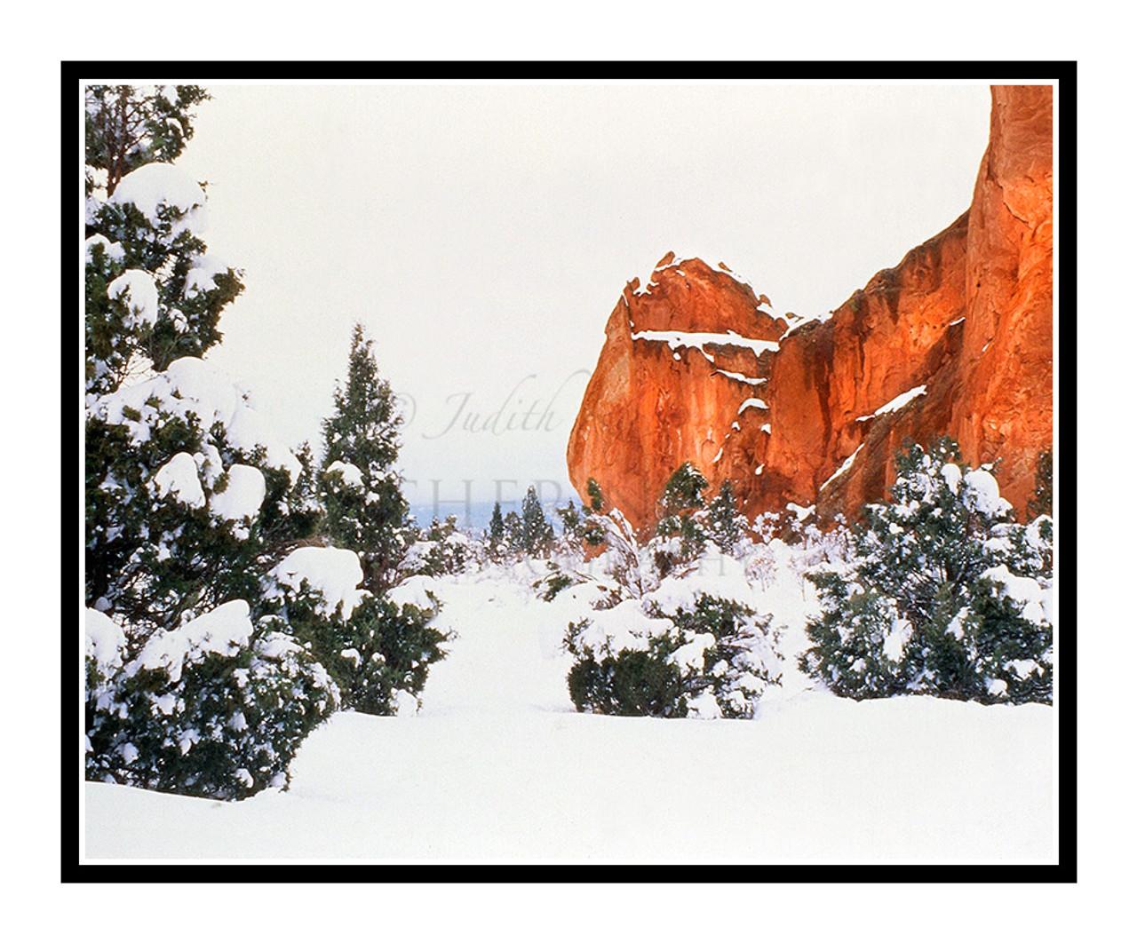 Garden Of The Gods Winter In Colorado Springs Colorado 257