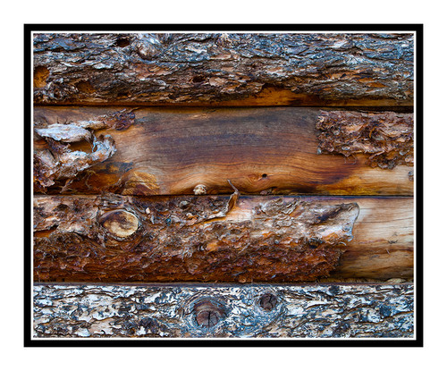Barnwood Texture Detail, Colorado 2354