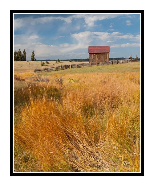 Old Barn in Mueller State Park, Colorado 2007