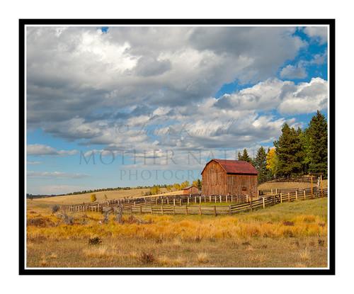 Old Barn in Mueller State Park, Colorado 2009