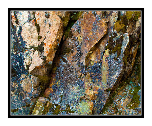 Rock Texture in Colorado 1377