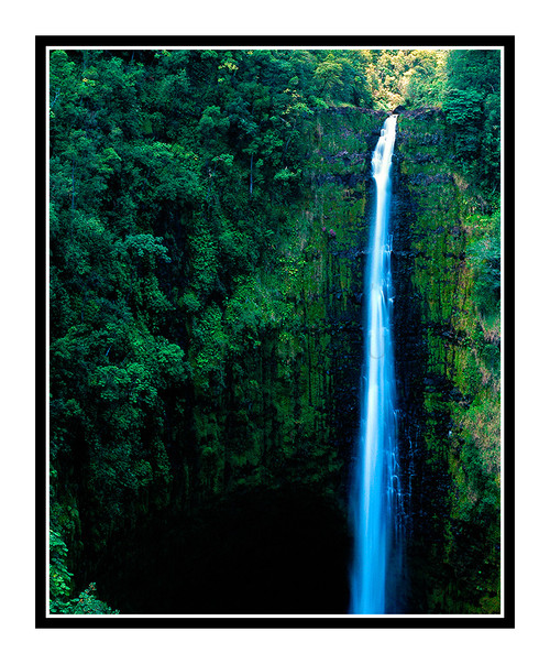 Akaka Falls Waterfall on the Big Island, Hawaii 184
