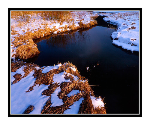 Winter Stream in Golden Gate State Park, Colorado 56