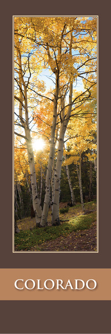 Colorado Bookmark - Mueller State Park 2513 Front