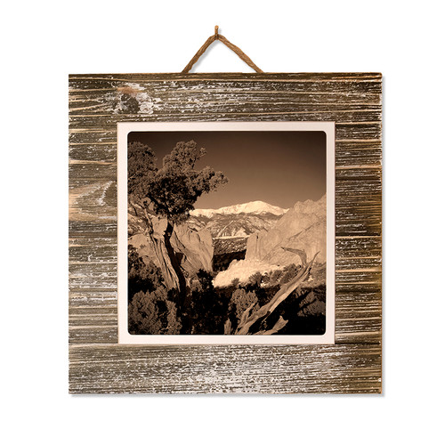 #41 Metal Print on Grey-washed Plaque
