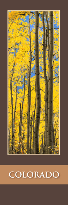 Colorado Bookmark - Aspen, CO 176 Front