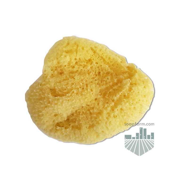 Mediterranean Silk Cosmetic Sponge 2 inch