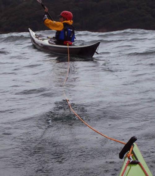SEA BEAN COMPACT TOW 14M Elite  by Whetman Equipment