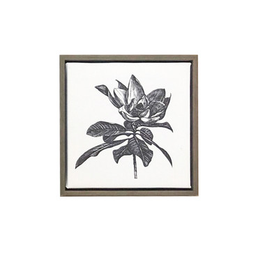 Magnolia Canvas Print Wall Decor