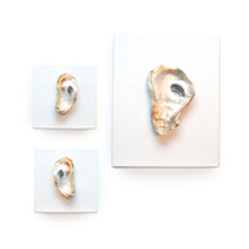 White/Gold Oyster Art