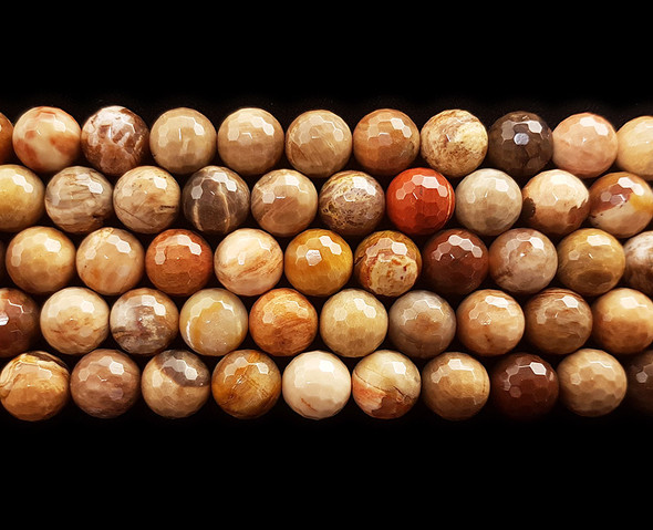 6mm Petrified wood agate faceted round beads