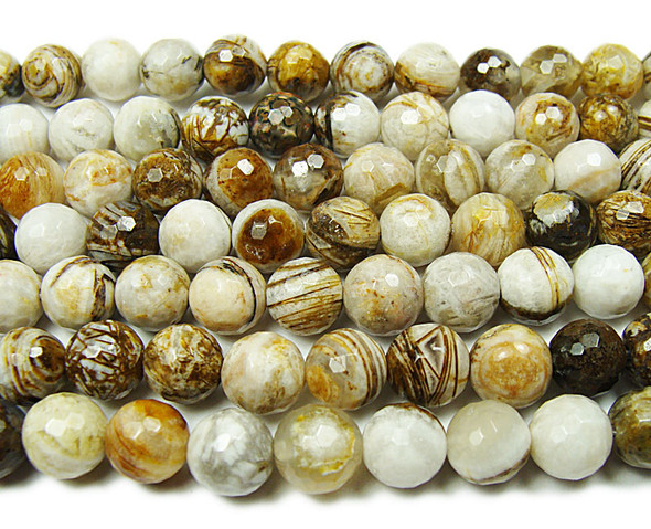 8mm American Petrified Wood Jasper Faceted Beads