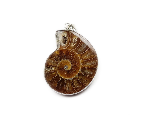 30x35mm Ammonite Fossil Pendant With Wire Frame And Bail