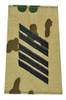 Bundeswehr Flecktarn Rank Insignia from Hessen Antique