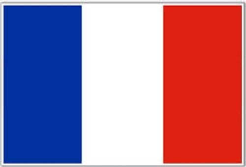 National Flag Of France from Hessen Antique