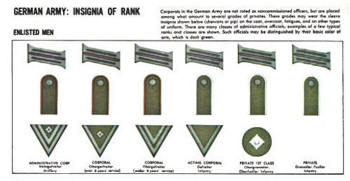 WH Rank Pip - Early War