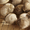 Virginia Countneck Clams - 12 Count