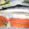 Salmon Lover Pack