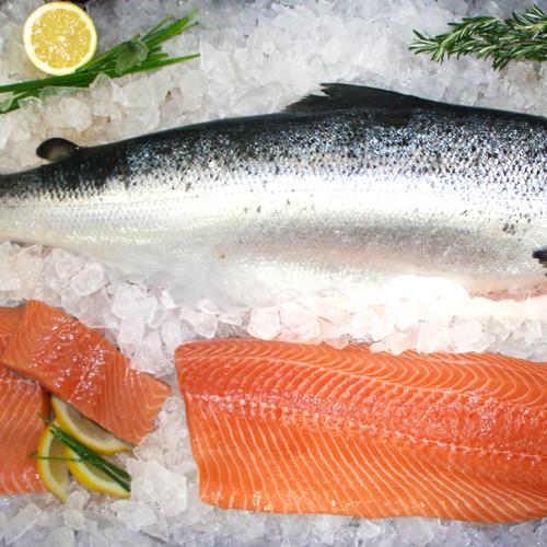 Salmon Lover Pack