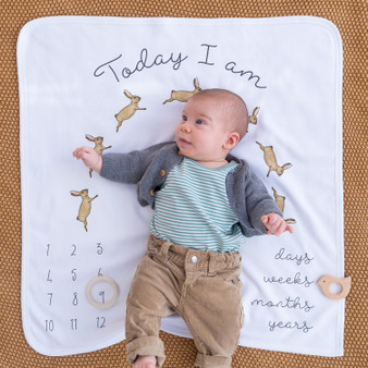 Wholesale bunny baby gifts