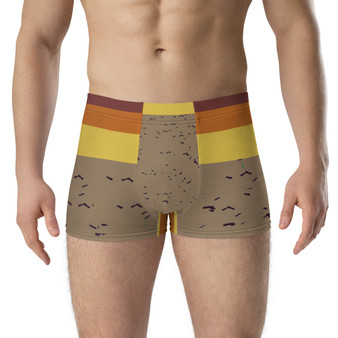 Abstract | Birds and Sand Boxer Briefs