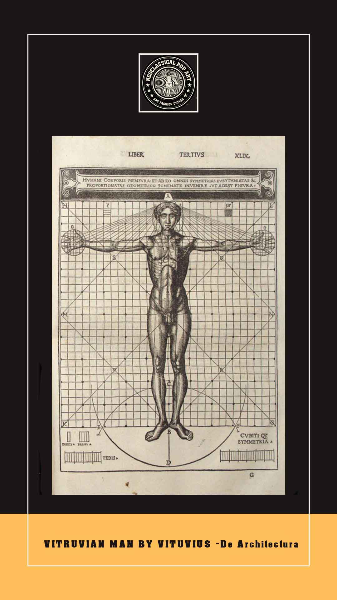 vitruvian man-drawing