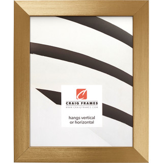 """Modern Aesthetics 125 1.25"""", Brushed Gold Picture Frame"""