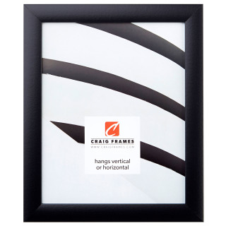 A simple 8 x 10 Gallery Black Contemporary picture frame.