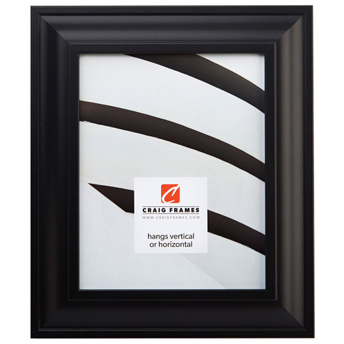 Contemporary Upscale Satin Black Picture Frame Craig Frames