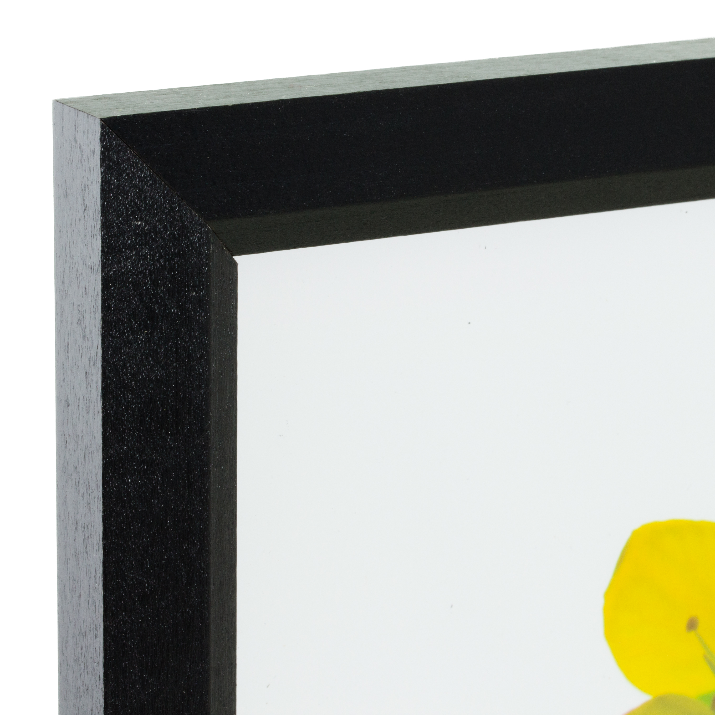 Wiltshire 200 4x6 Inch Black Picture Frame Set Set of Four .75 Wide Craig Frames 200ASHBK0406L-4