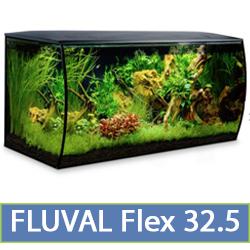 flex-32.5.jpg