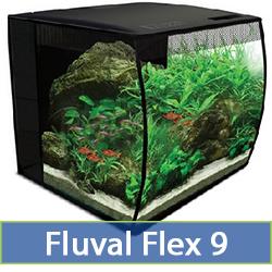flex-9.jpg