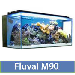 m90-2.jpg