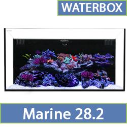 marine-28.2.jpg