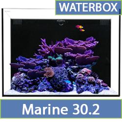 marine-30.2.jpg