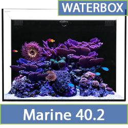 marine-40.2.jpg