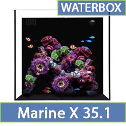 marine-x-35.1.jpg