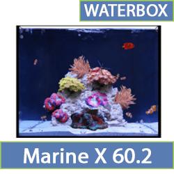 marine-x-60.2.jpg