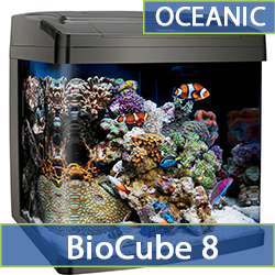 oceanic-biocube-8.jpg