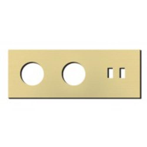 Socket - 3 gang - power + USB outlet - brushed brass