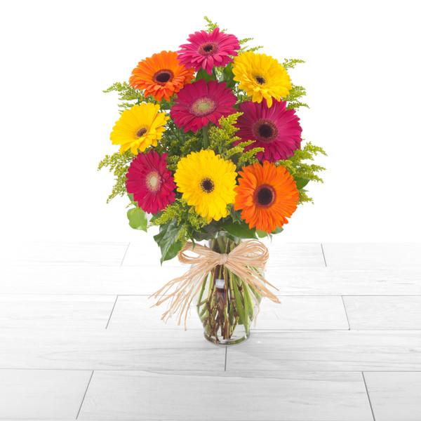 Cheery Gerbera | bright, pastel or warm