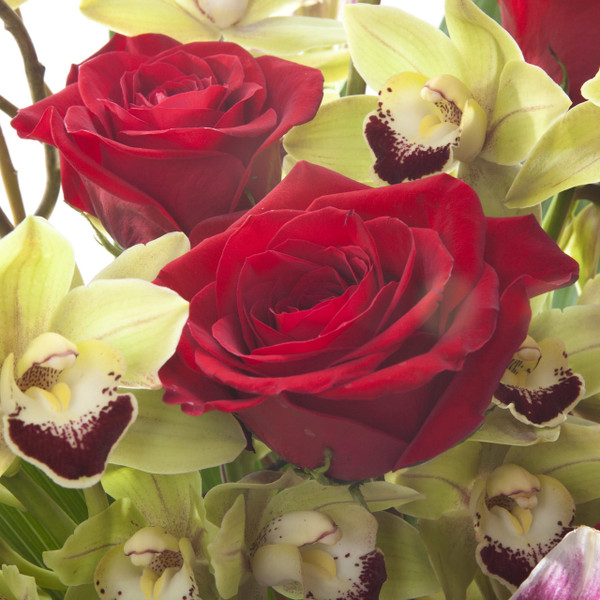Orchid + Roses    Red