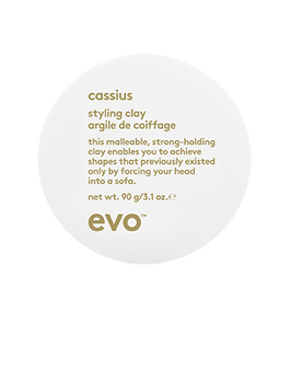 evo Cassius Styling Clay 90g - New