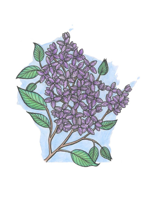 Wisconsin sticker - Lilacs