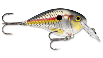 Rapala DT (Dives To) 04