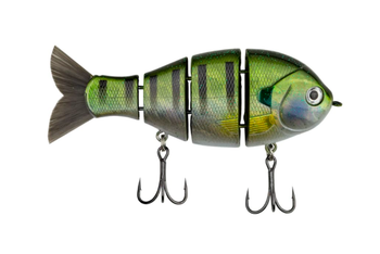 Mike Bucca's Baby Bull Gill