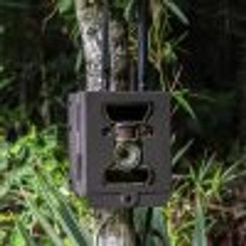 WiseEye Security/Bear Box