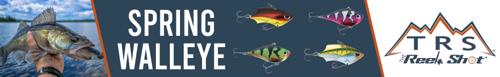 1010990-walleye-landing-page-1-031921.png