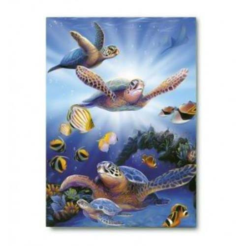 Turtles in Light Greeting Card 63000103