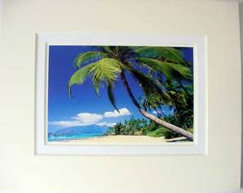 "Palm Tree Kamaole Beach Matted Print 11"" x 14"" - 1817957000"